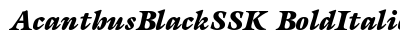 Acanthus Black SSK Bold Italic preview