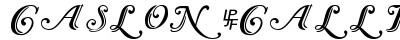 Caslon Calligraphic Initials preview