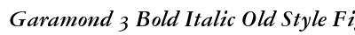 Garamond 3 Bold Italic Old Style Figures preview