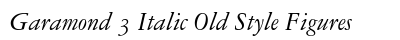 Garamond 3 Italic Old Style Figures preview