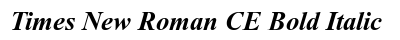 Times New Roman CE Bold Italic preview
