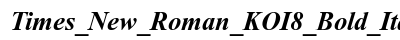 Times New Roman KOI 8 Bold Italic preview