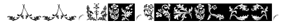 YY Old English Dingbats Italic font